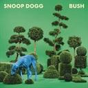 Cover: BUSH