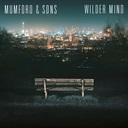 Cover: Wilder Mind