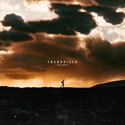 Tranquillo (feat. Branco)